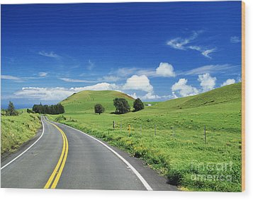 Waimea Ranch Land Wood Print by Bob Abraham - Printscapes