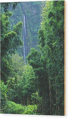 Waimoku Falls Wood Print by Dave Fleetham - Printscapes