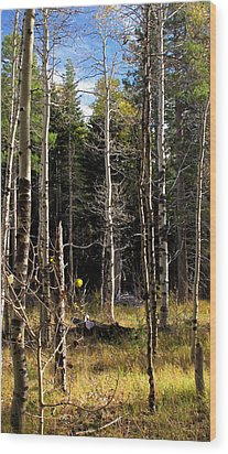 Waiting For Snow Sierra Nevada Autumn Larry Darnell Wood Print by Larry Darnell