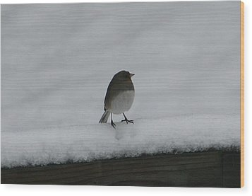 Wood Print featuring the digital art Waiting For Spring by Barbara S Nickerson