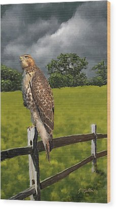 Waiting For The Storm - Red Tail Hawk Wood Print by Kathie Miller
