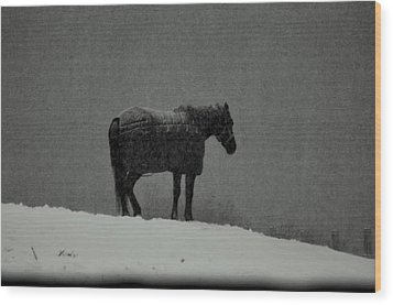 Waiting Out The Storm Wood Print