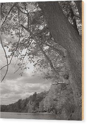 Walden Pond Wood Print by Heather Weikel