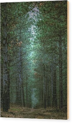 Walk In The Woods Wood Print by Loni Collins