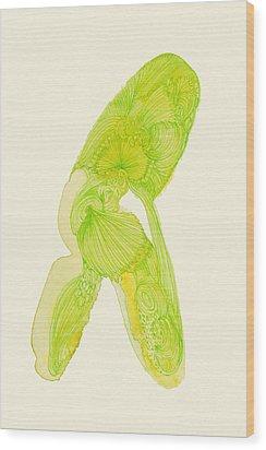 Walk - #ss14dw035 Wood Print by Satomi Sugimoto