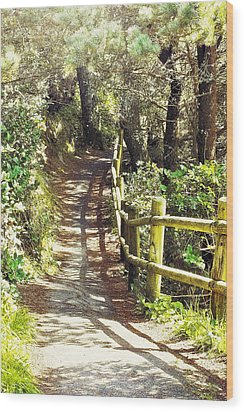 Walk To The Beach Wood Print by Janie Johnson