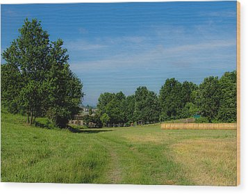 Walk To The Countryside  Wood Print by Cesare Bargiggia