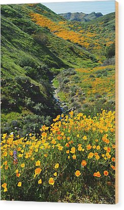 Wood Print featuring the photograph Walker Canyon Vista by Glenn McCarthy Art and Photography