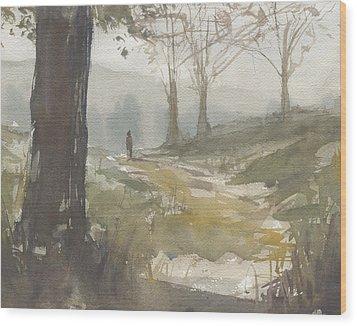 Walking At Green Island Wood Print
