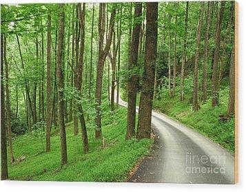Walking On A Country Road - Appalachian Mountain Backroad Wood Print by Matt Tilghman