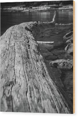 Walking On A Log Wood Print