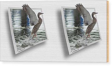 Walking On Water - Gently Cross Your Eyes And Focus On The Middle Image Wood Print by Brian Wallace