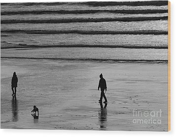 Wood Print featuring the photograph Walking The Dog At Marazion by Brian Roscorla