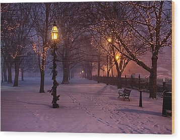 Walking The Path On Salem Common Wood Print