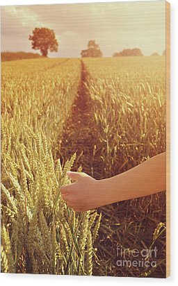 Wood Print featuring the photograph Walking Through Wheat Field by Lyn Randle