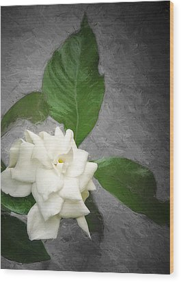 Wall Flower Wood Print by Carolyn Marshall
