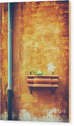 Wood Print featuring the photograph Wall Gutter Vase by Silvia Ganora