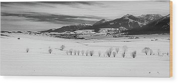 Wood Print featuring the photograph Wallowa Mountains by Cat Connor
