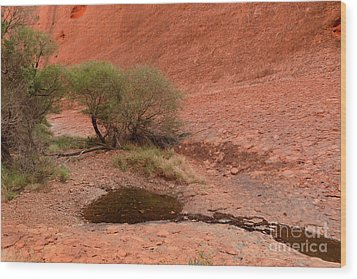 Wood Print featuring the photograph Walpa Gorge 01 by Werner Padarin