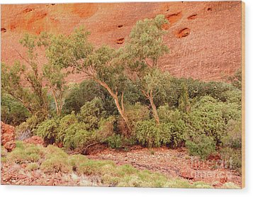 Wood Print featuring the photograph Walpa Gorge 03 by Werner Padarin