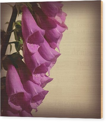 War Torn Wood Print by Bonnie Bruno