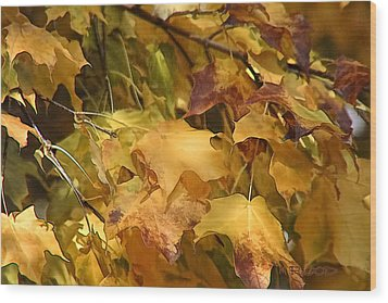 Wood Print featuring the photograph Warm Fall Leaves by Michael Flood