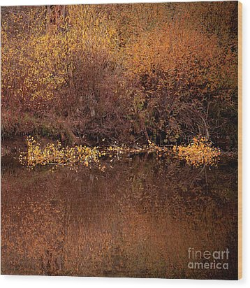 Wood Print featuring the photograph Warm Reflection by The Forests Edge Photography - Diane Sandoval