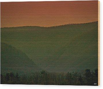 Warm Spring Mountains Wood Print by Debra     Vatalaro