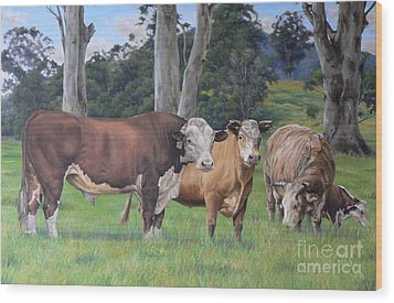 Warrawillah Cattle Wood Print by Louise Green