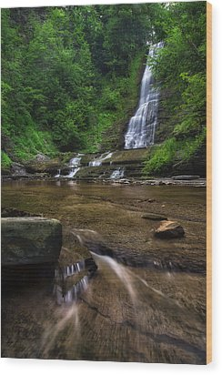 Wood Print featuring the photograph Warsaw Falls 2 by Mark Papke