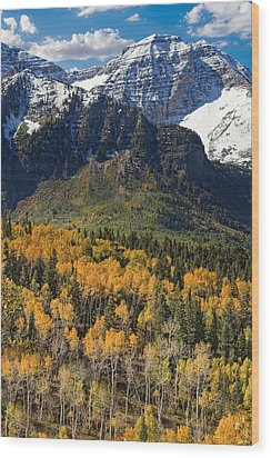Wasatch Mountains Autumn Wood Print