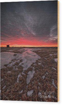 Wascana Dawn Wood Print by Ian McGregor