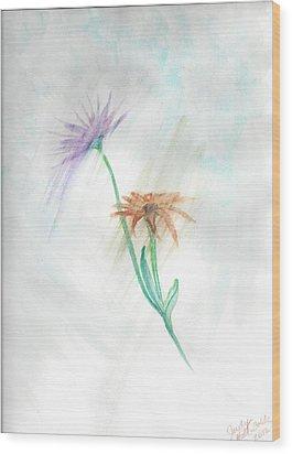 Washing Away Wood Print by Judy Hall-Folde