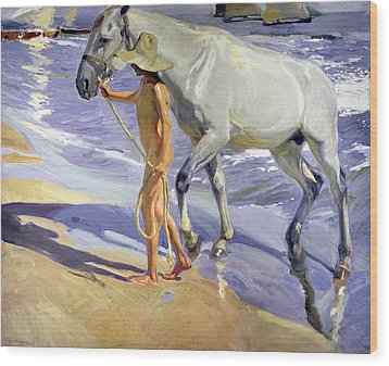 Washing The Horse Wood Print by Joaquin Sorolla y Bastida