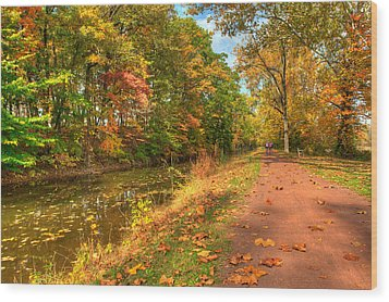 Washington Crossing Park Wood Print