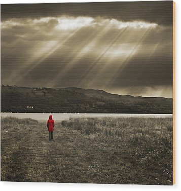 Watching In Red Wood Print by Meirion Matthias