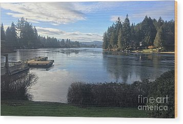 Wood Print featuring the photograph Watching The Ice Melt by Victor K