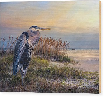 Watching The Sun Go Down Wood Print by Brian Tarr