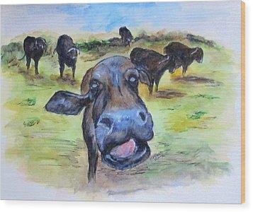 Water Buffalo Kiss Wood Print by Clyde J Kell