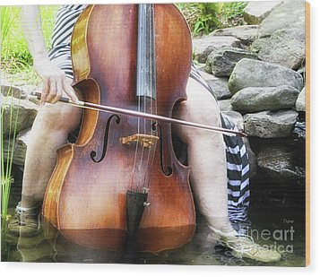 Water Cello  Wood Print by Steven Digman