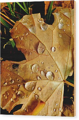Water Drops Wood Print