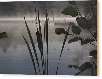 Water Fairies Wood Print