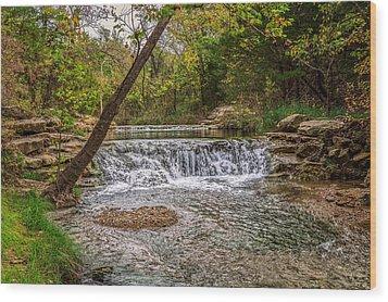 Water Fall Wood Print by Doug Long