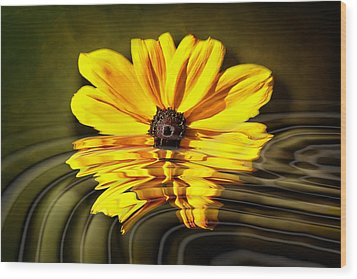 Wood Print featuring the photograph Water Flower by Gary Smith