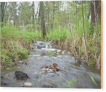 Water Flows After A May Rain Wood Print by Kent Lorentzen
