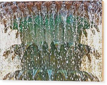 Water Fountain Bright Charleston Wood Print by Lori Kesten