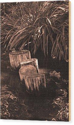 Water Garden Wood Print by Audrey Venute