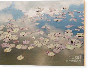 Water Lilies In Schoenbrunn Vienna Austria Wood Print by Julia Hiebaum