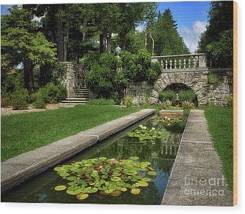 Wood Print featuring the photograph Water Lilies In The Pool by Mark Miller