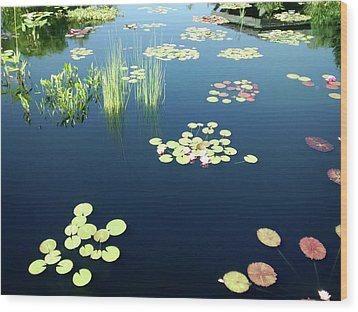 Wood Print featuring the photograph Water Lilies by Marilyn Hunt